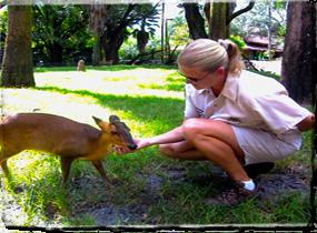 Animal Training Careers